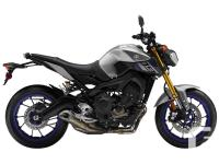 TRIPLE THE FUNIntroducing the 2015 FZ-09, a naked