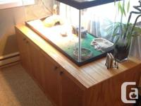 Comes with: - Adult bearded dragon - Approx. 80 gal.