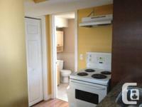Modern, clean, above ground bachelor/studio apartment