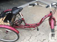 Adult tricycle, Schwin Meridian with ebike conversion
