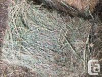 My cousin Joe Piva is a hay farmer in Kamloops. He is