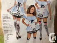 Alice in Wonderland Halloween Costume Medium Size