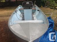 16 ft lifetimer center console 60 Hp main motor and 8Hp