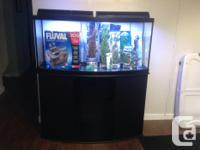 72 gallon aquarium as well as stand. $800.00 obo.