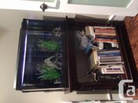 Fish tank, approx 30 girl and customized stand, all