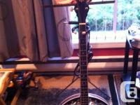 Alabama 4 string conventional electrical banjo.