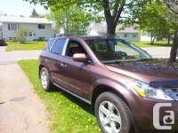 Make Nissan Model Murano Year 2003 Colour Brown kms