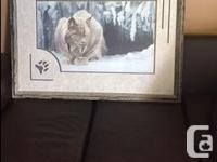 "Beautifully framed limited edition large ""Dozing Lynx"""