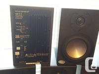Professional monitors (musicians) or high-end home