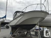20' Revenge, just serviced engines, canvas in great