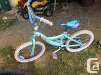 Newer boys bmx, in great shape(needs a tube in rear