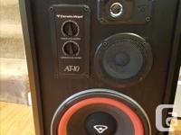 Here is a pair of Cerwin Vega AT-10 floor speakers.