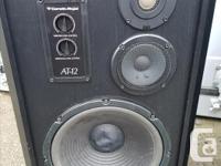Here is a pair of Cerwin Vega AT-12 floor speakers.