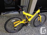 Complete suspension mountain bicycle. Thoroughly kept
