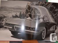 Make Chevrolet Model Corvette Year 1981 Colour red Rare