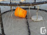 Stainless crab trap with flat and leaded line. Comes