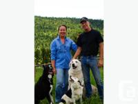 HARMONY FARM Kennel & Lamb located just 35 minutes from