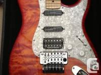 I have a 2008 Custom-made Made Electric Guitar, Strat
