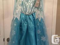 Disney Store Frozen  Queen Elsa costume dress with all