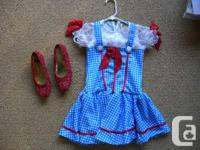 My daughter was Dorothy from Wizard of Oz last year so