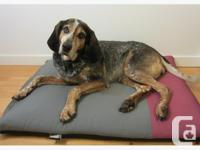 A luxurious eco-friendly dog bed that provides the