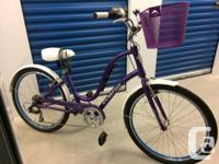Like new - includes mounted air pump, bell, custom