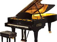"""""""rated same as U.S. Steinway - roughly half the price"""""""