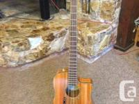 Fender Victor Bailey Trademark Acoustic Bass w / Fender