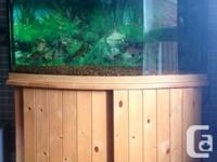 7 year old fresh water fish tank, no scratches, no