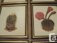 Beautiful coloured drawings (prints) of various