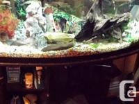 Includes matching stand and fluval external canister