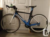 2009 Giant Aeryn Alliance TT/Triathlon bike Size Small