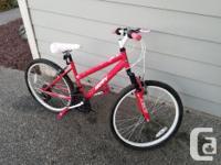 Girls mountain bike 18 speed in great shape. Will need