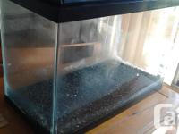 Selling a great condition 25 gallon aquarium with neon