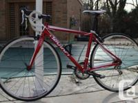 Great rounded bike perfect for entry level/intermediate