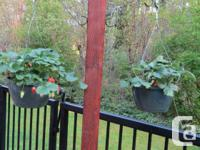 This is a Hanging Basket or Bird Feeder pole. It is