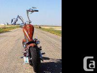 2003 Anniversary edition Harley Davidson 1200 Sportster