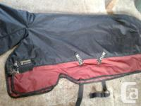 """69"""" Mio by Horseware 350 gram winter rug. Used 6 times"""