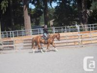 Metchosin Riding Opportunity. The property has a 60ft