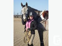West Brooke Equestrian - Shawna Wells is offering
