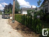 Hire Local Landscaper with the Best Rates in Town call