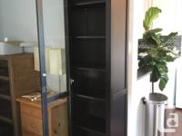 Black-Brown cabinet made from solid pine. Full length