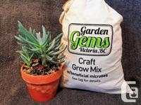 We make a variety of craft potting blends. This our