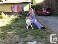 Pets Yes Smoking No Older house in Sooke, quiet, clean,