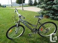 Infinity Superior 21 Rate Grownup Hill Bike - Appeal