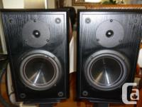 Hi, this is a great looking and amazing sounding pair
