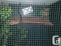 Large reptile cage for sale with all the equipment