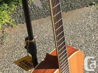 All solid made in Vancouver Dreadnought Body Single