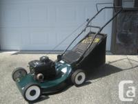 "Lawn mower: 5.0 HP/20"" cut Rally with Briggs & Stratton"