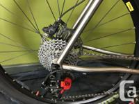 Excellent condition handmade titanium mountain bike